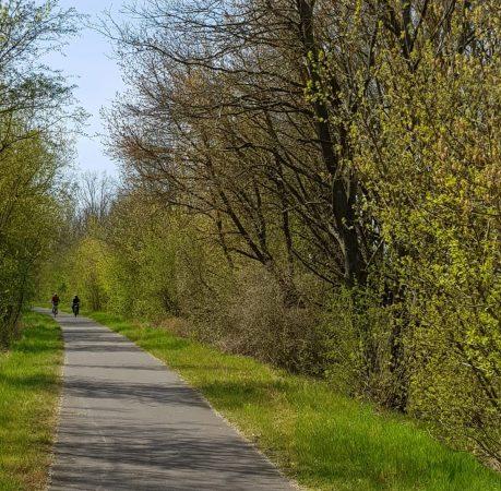 Radtour 1a: Oderbruch-Oder-Tour Eberswalde – Oderberg – Strausberg inkl Oder-Radweg