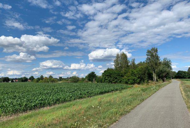 Der Schwarze-Elster-Radweg führt durch ruhige Landschaften - im Hintergrund ist Plessa zu sehen